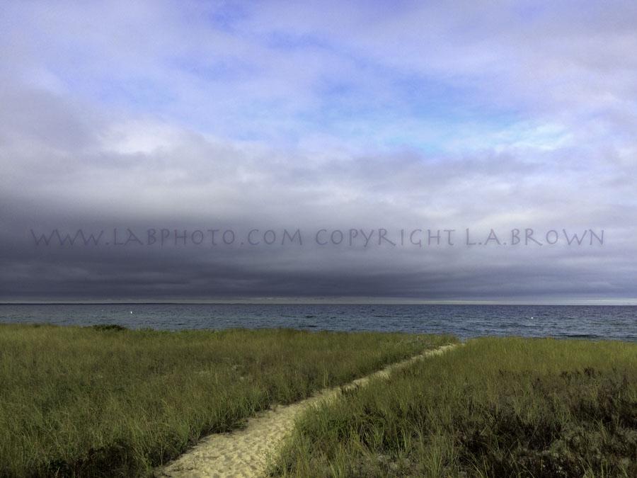 LABPHOTO Island Life-151.jpg
