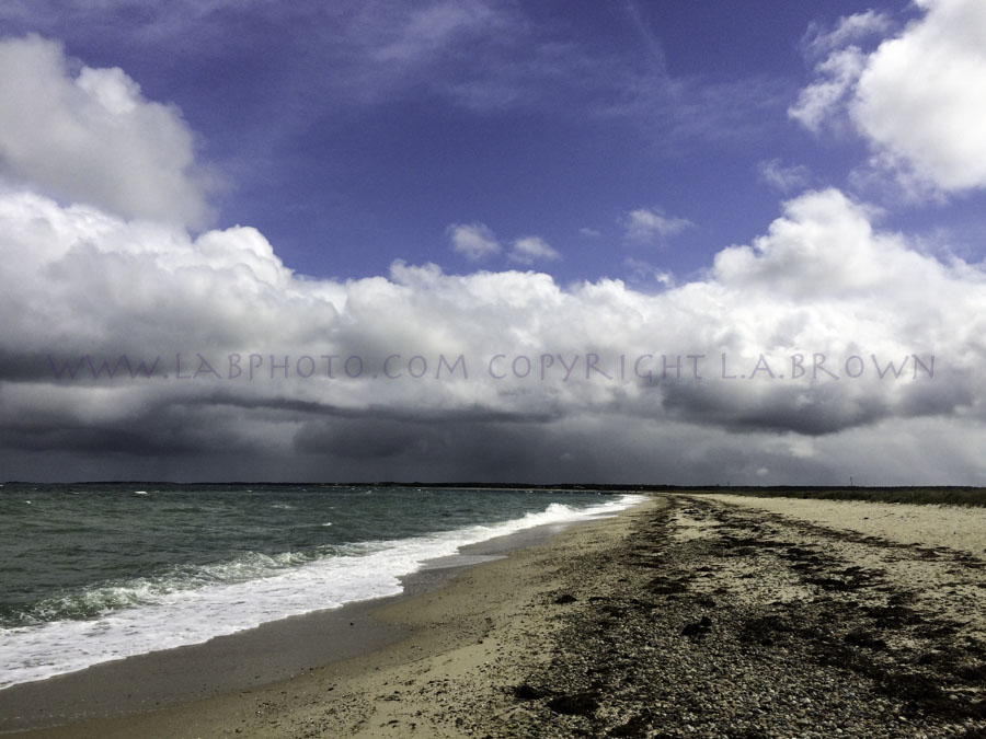 LABPHOTO Island Life-154.jpg