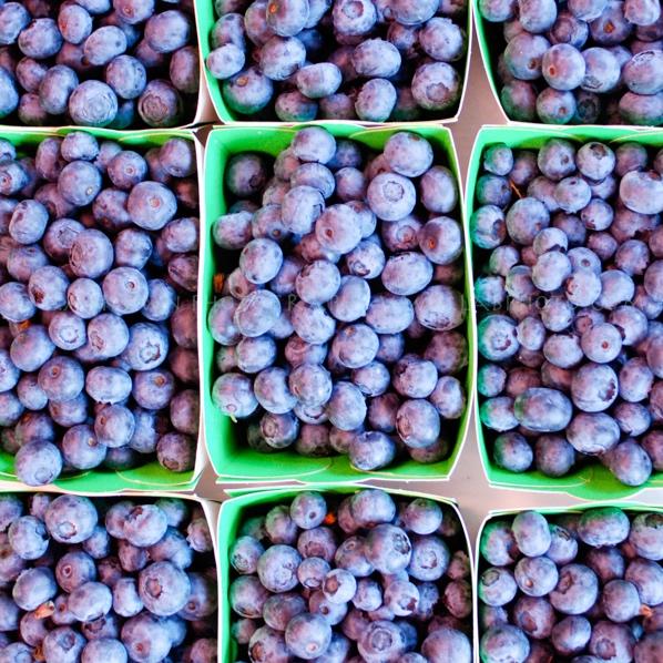 FruitsFlowers-7.jpg
