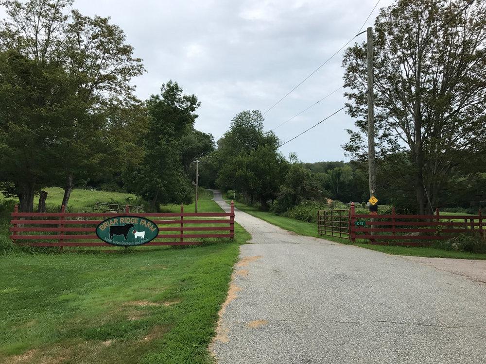 entry to farm.jpg