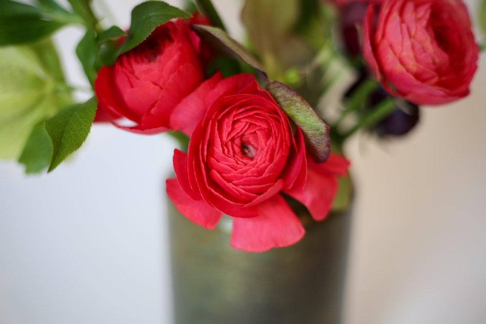 Some Flowers to expect: Hellebores, Ranunculus and Poppies -