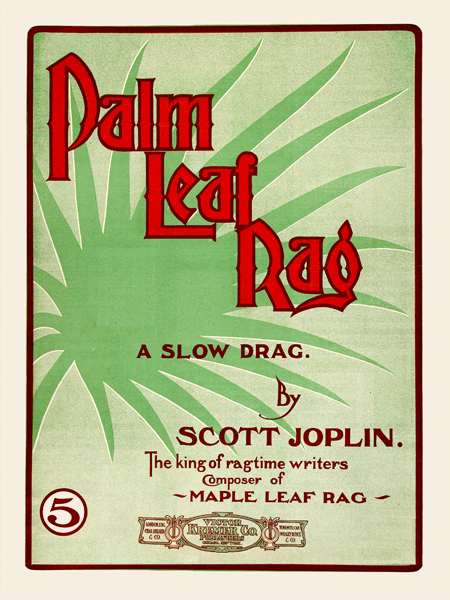 Palm_Leaf_Rag-450thumb.png
