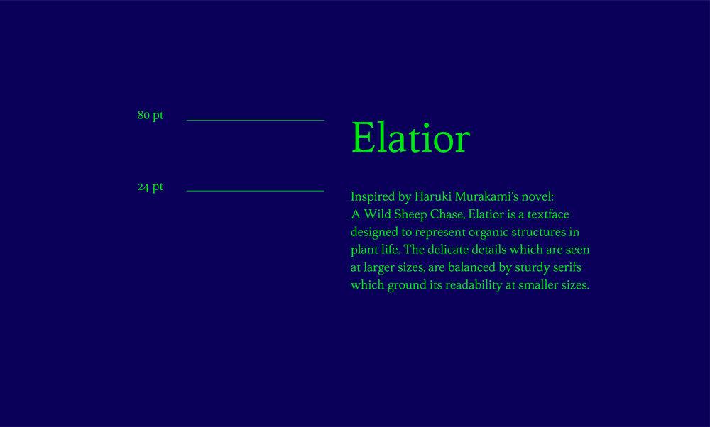 elatior_upload-04.jpg