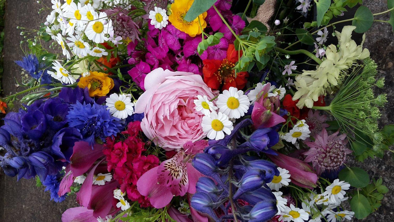 Ducks daffodils home properly seasonal british flowers izmirmasajfo Images