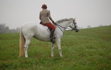 Sterling Silver (now Foxglen's Lady Margaret)