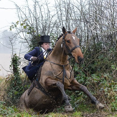 Jumping a ditch while out with the Meath Foxhounds in Co. Meath, north of Dublin.