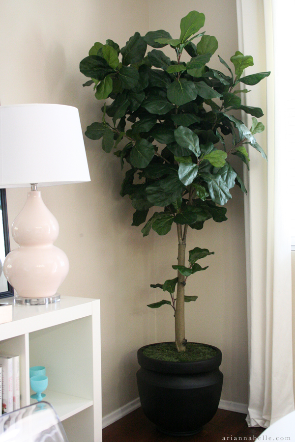 Arianna Belle One Room Challenge Week 4 // Fiddle Leaf Fig Tree from NDI  http://ariannabelle.com/blog