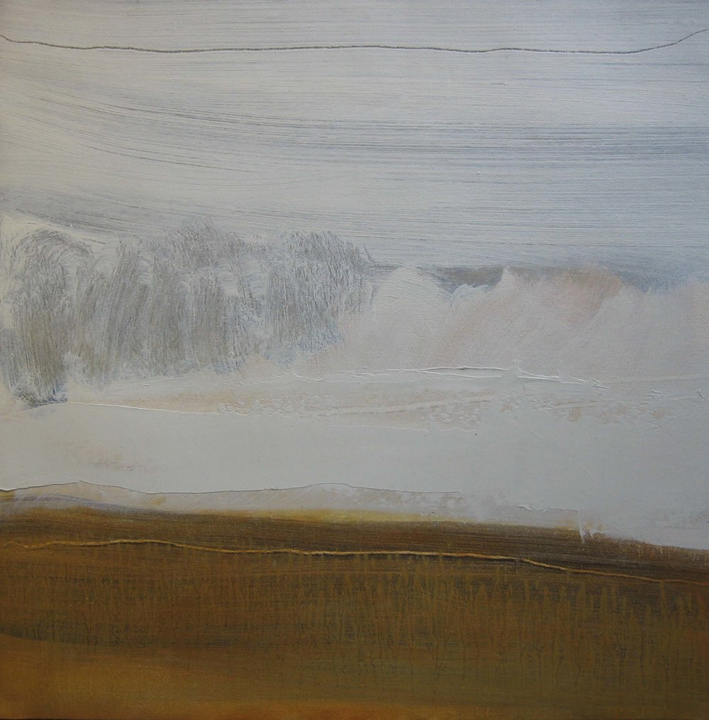 Leah Beggs 2009 - Late Winter Sunshine at Baurisheen -Oil on Unstretched Canvas -45 x 45cm_sml.jpg