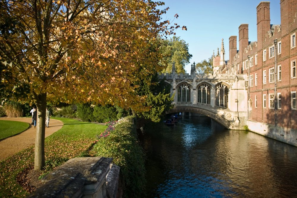 Science: Polish Perspectives Conference - Cambridge, UK | 8–9 November 2019More info coming soon!