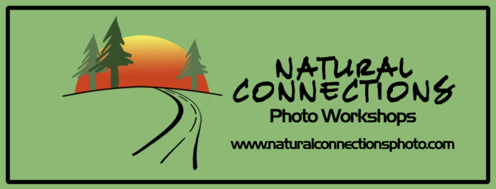 Natural Connections  - Nature workshops in Georiga, Old Car City, Tetons, Maine, and more!