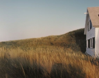 Dune, Grass, House, Truro. 1984