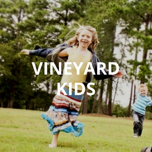 VINEYARD KIDS