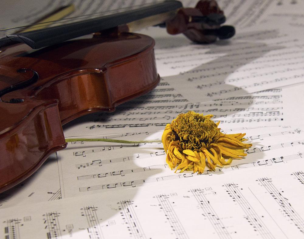 musicyo.jpg
