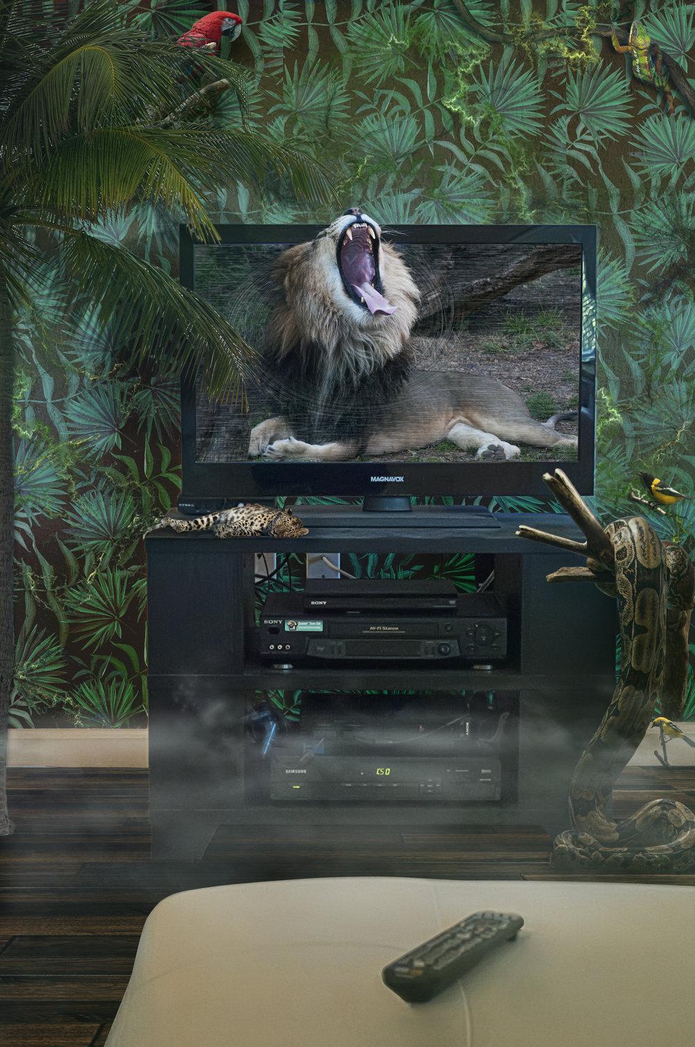 LIVING TV SHOW.jpg