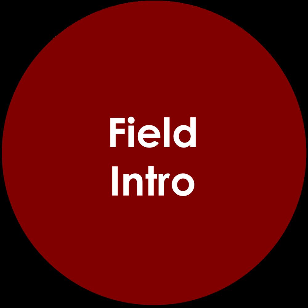 Field Intro