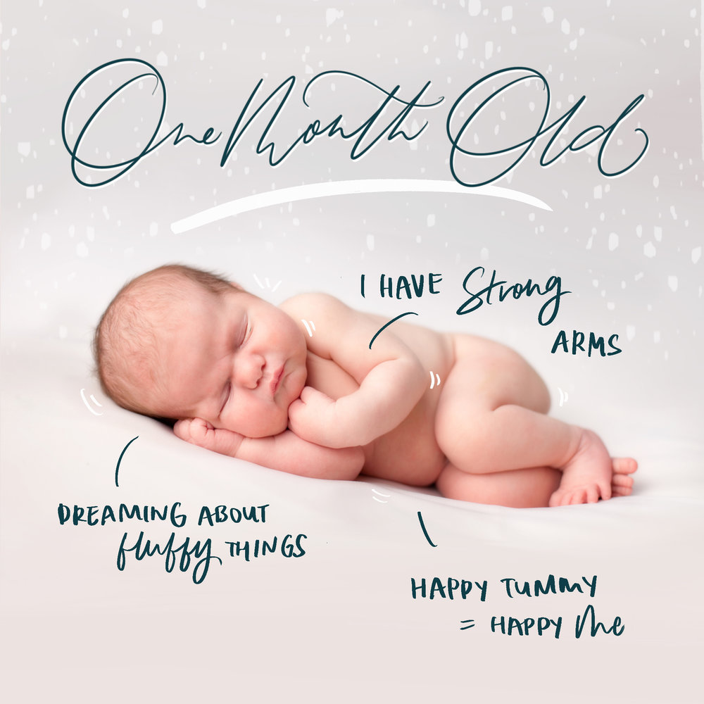 One-Month-Old-Baby-(2160px-x-2160px).jpg