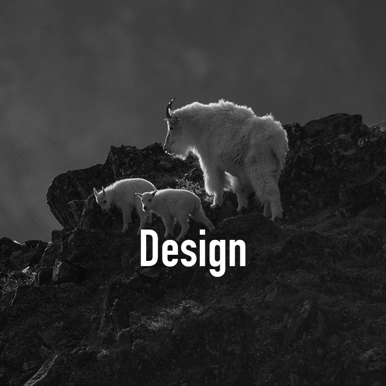 DesignGOATSBW.jpg