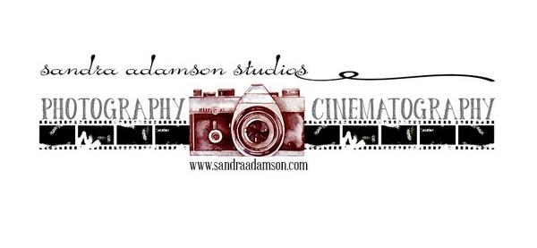 Sandra Adamson Studios