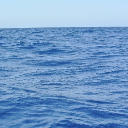 MotM_Sea.jpg