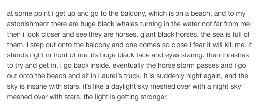 DREAM OF HORSES