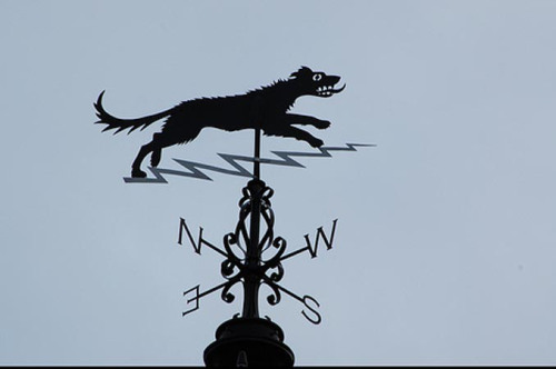 Black dog weather vane (photo from johnknifton.com).
