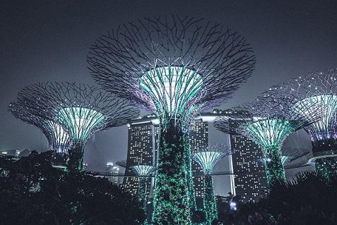 futuristic lights in city.jpg