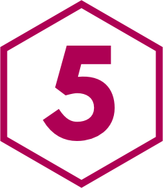 Pink 5 Icon.png