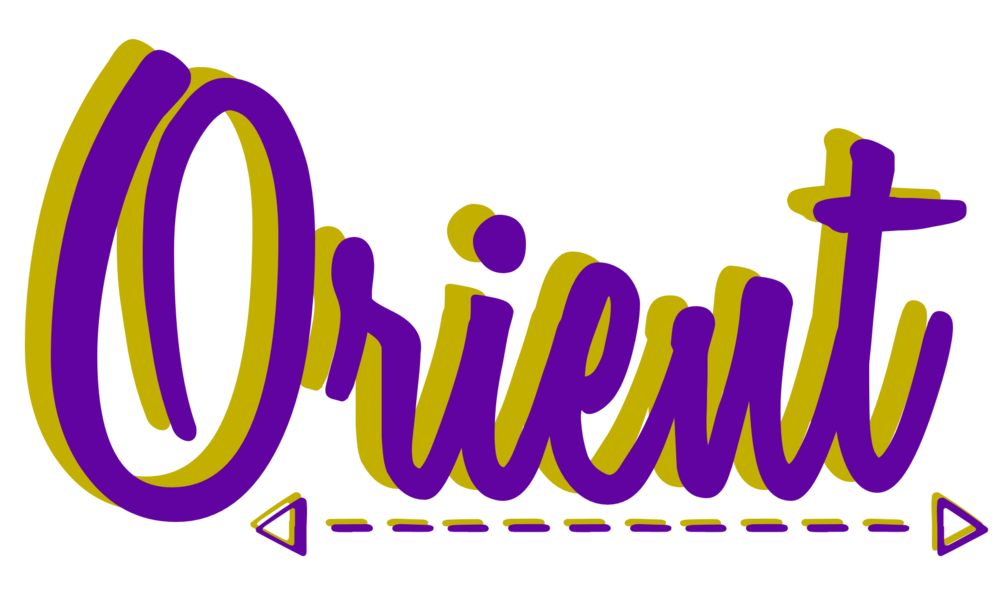 Orient choose a direction for your business to travel