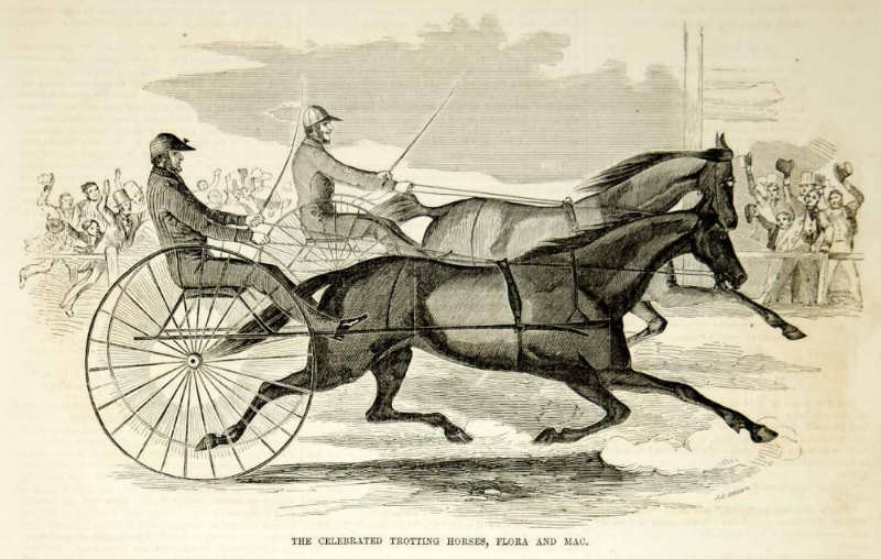 Bernard Casey, Mary's Great uncle, bred Standardbred Trotting horses, which he raced at the saratoga harness track