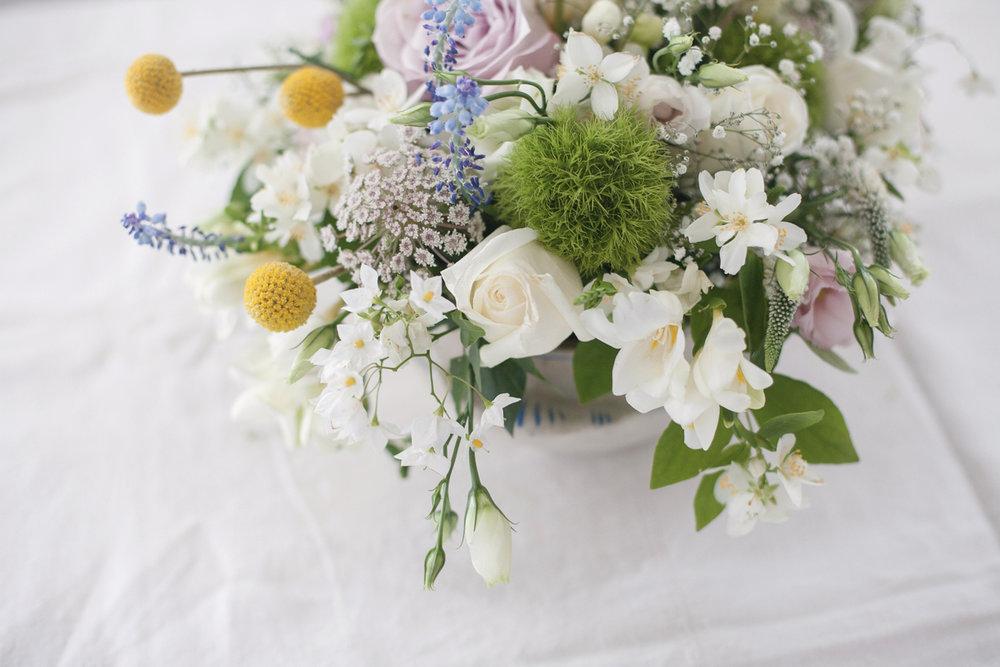 Flores R+J-9770.jpg