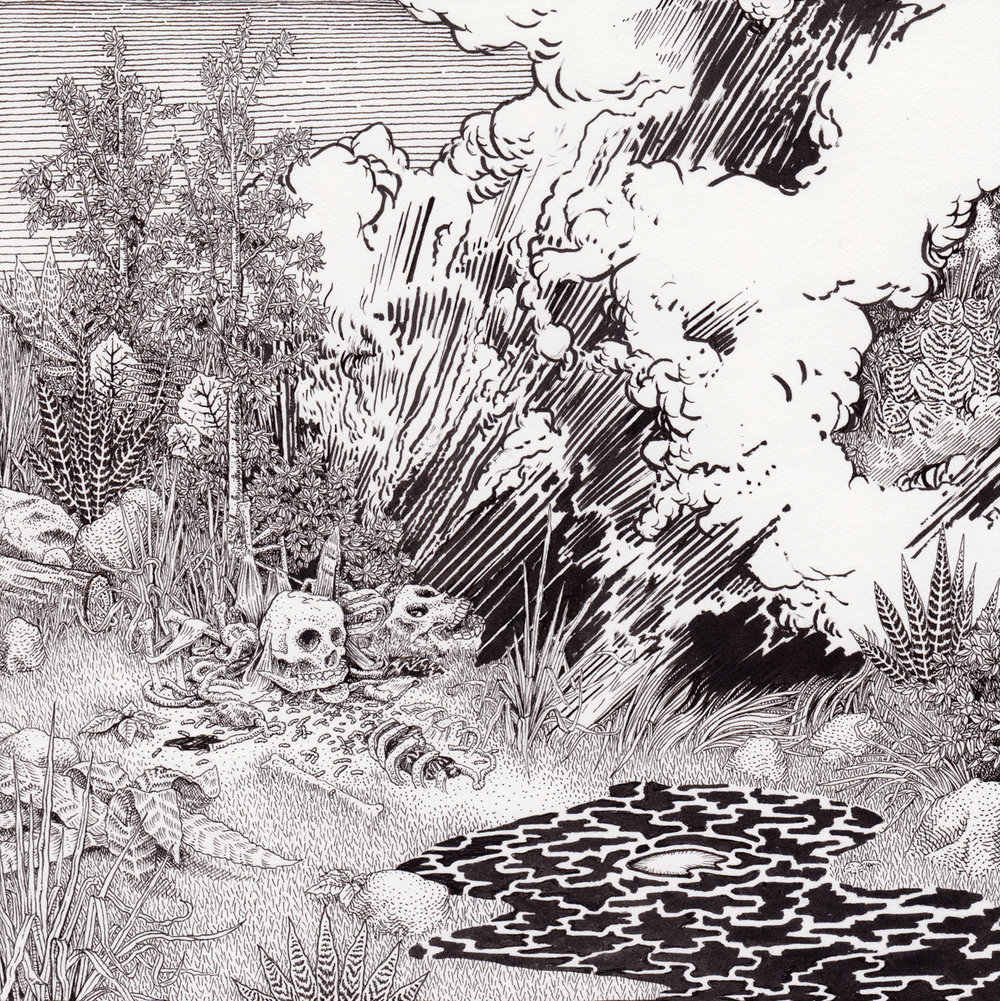 "Black Meadow, 7.5"" x 7.5"", pen on paper"