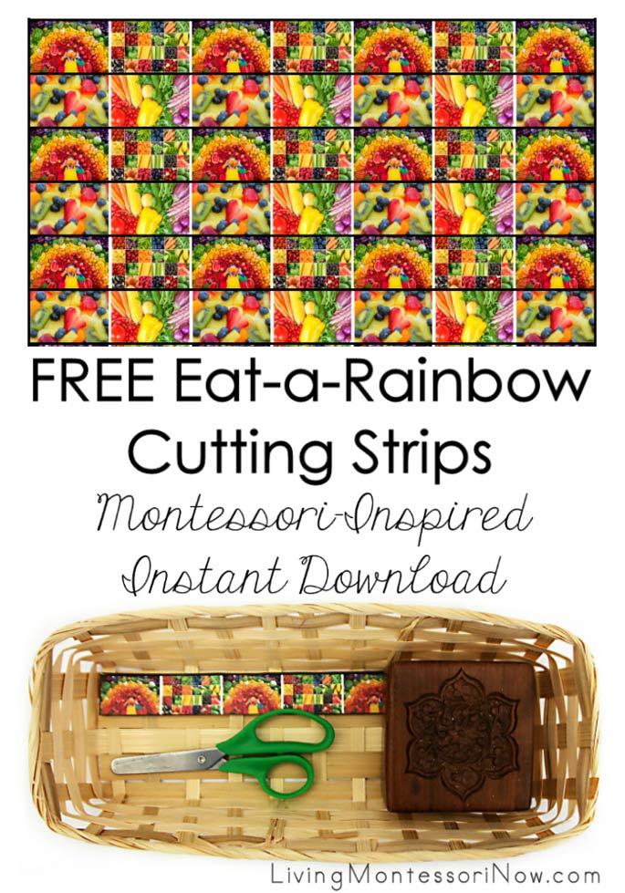 MONTESSORI-INSPIRED CUTTING STRIPS