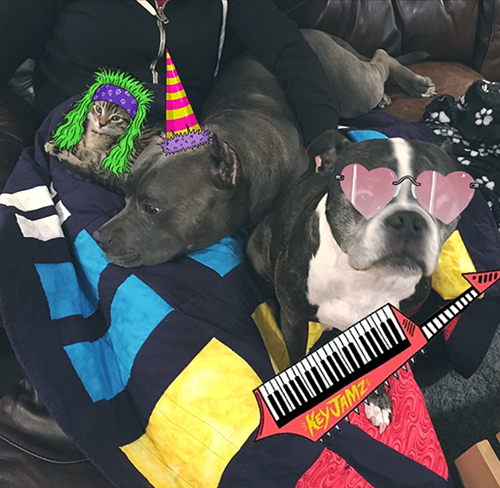 Studio Managers:Duke, Bluie & Werner.