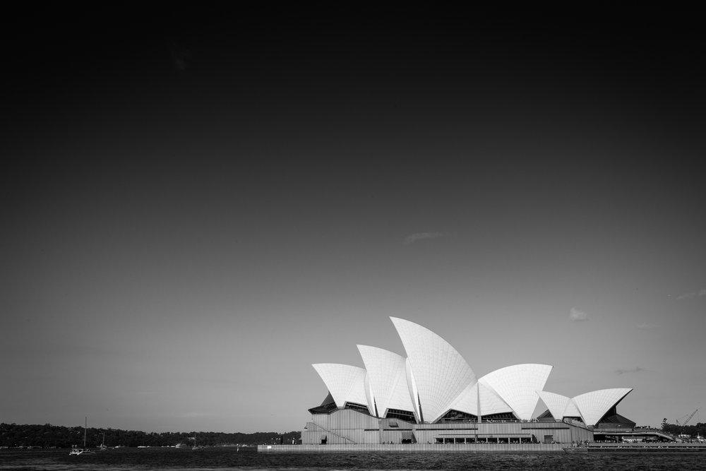 Sidney1.jpg