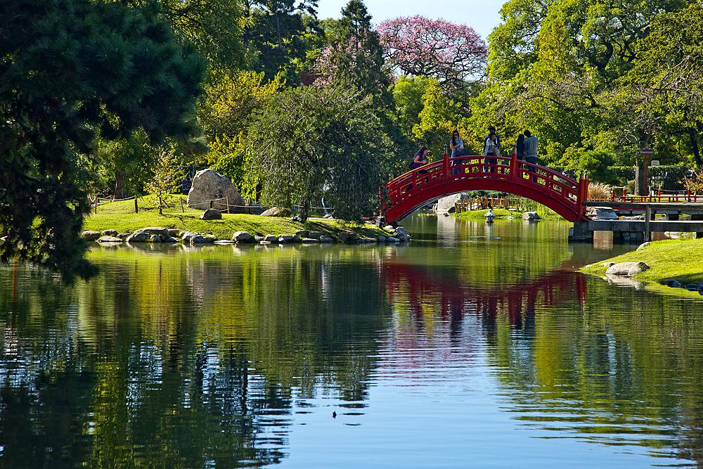 japanese-garden.jpeg