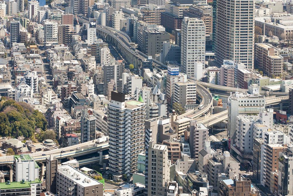 tokyosakurafestival-3.jpg