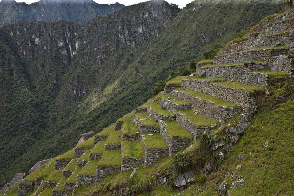 Machu Picchu-267.jpg
