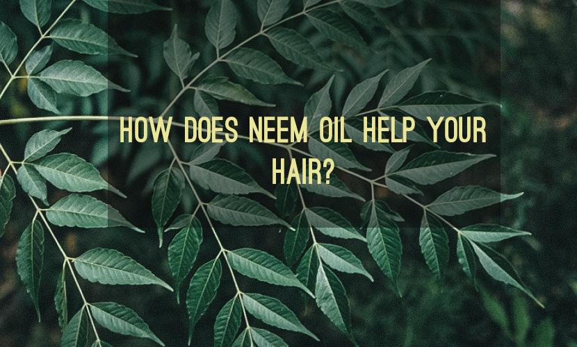 neem oil.jpg