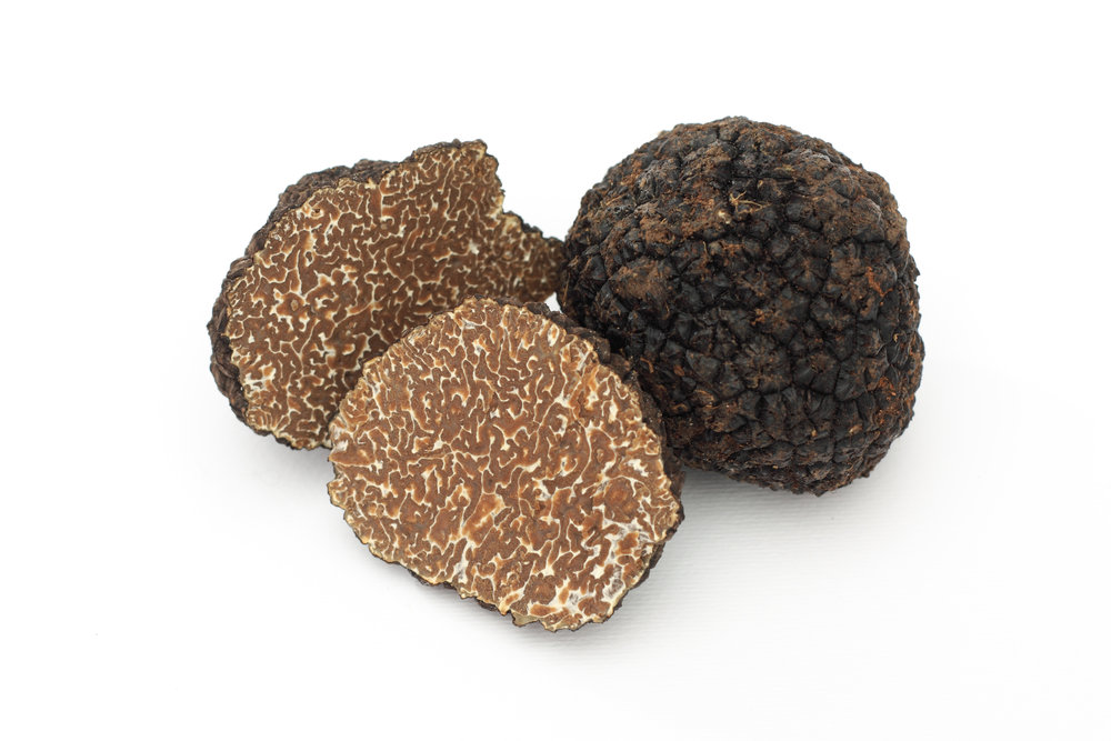 TRUFFLE FOR WEBSITE.jpg