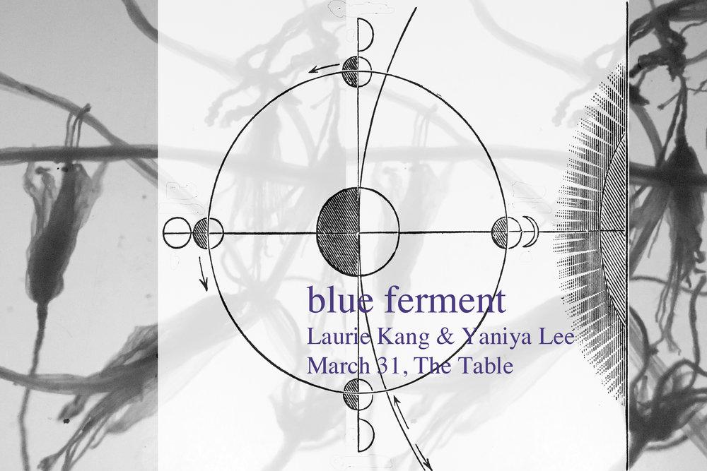 BlueFerment.jpg