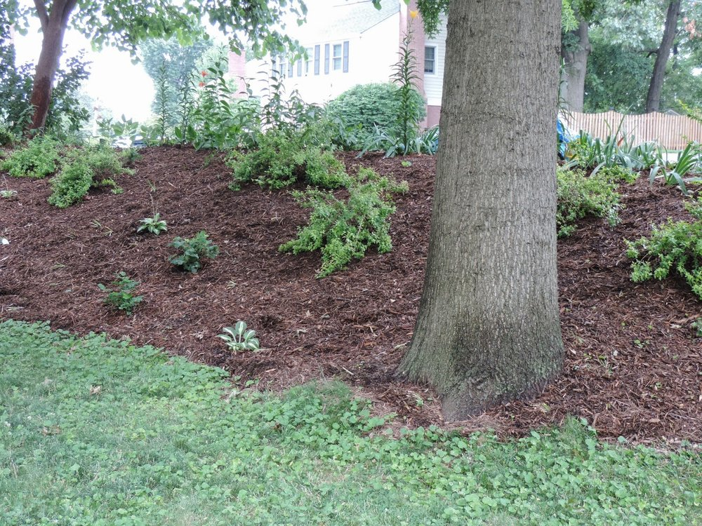 Fresh Mulch Installation