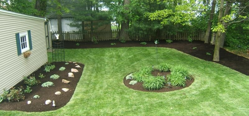 Beds - Everything is bare. Take advantage of it and put in those new plant beds you were talking about doing last spring.