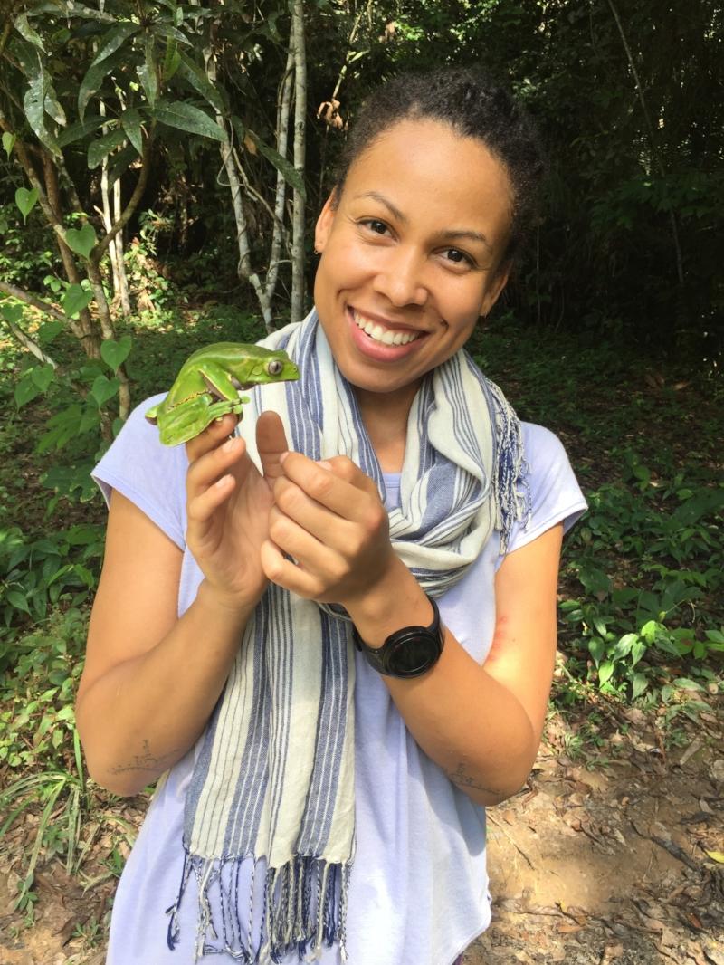 Kambo frog medicine. Book your denver Kambo ceremony.