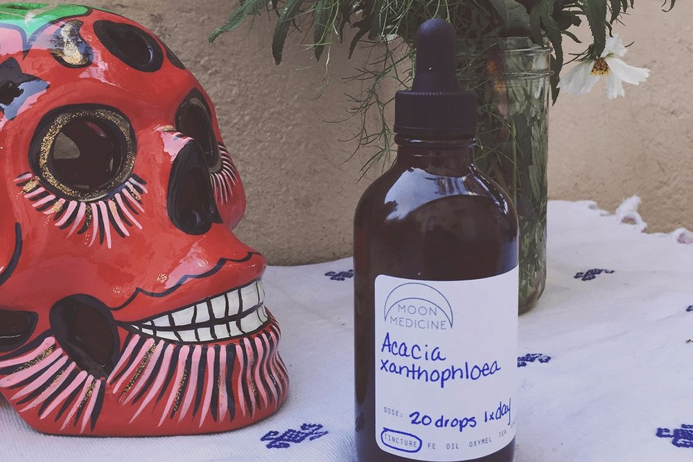 Ancestor Medicine.jpg