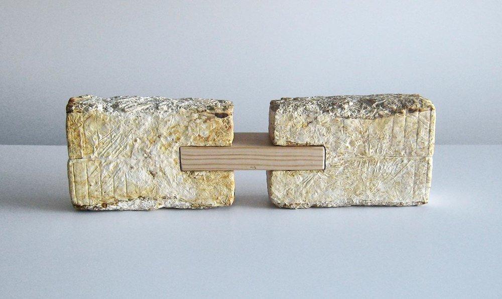 """Mycoworks, """"Fungus Brick"""".Fungal mycelium, wood. Image courtesy of Mycoworks."""