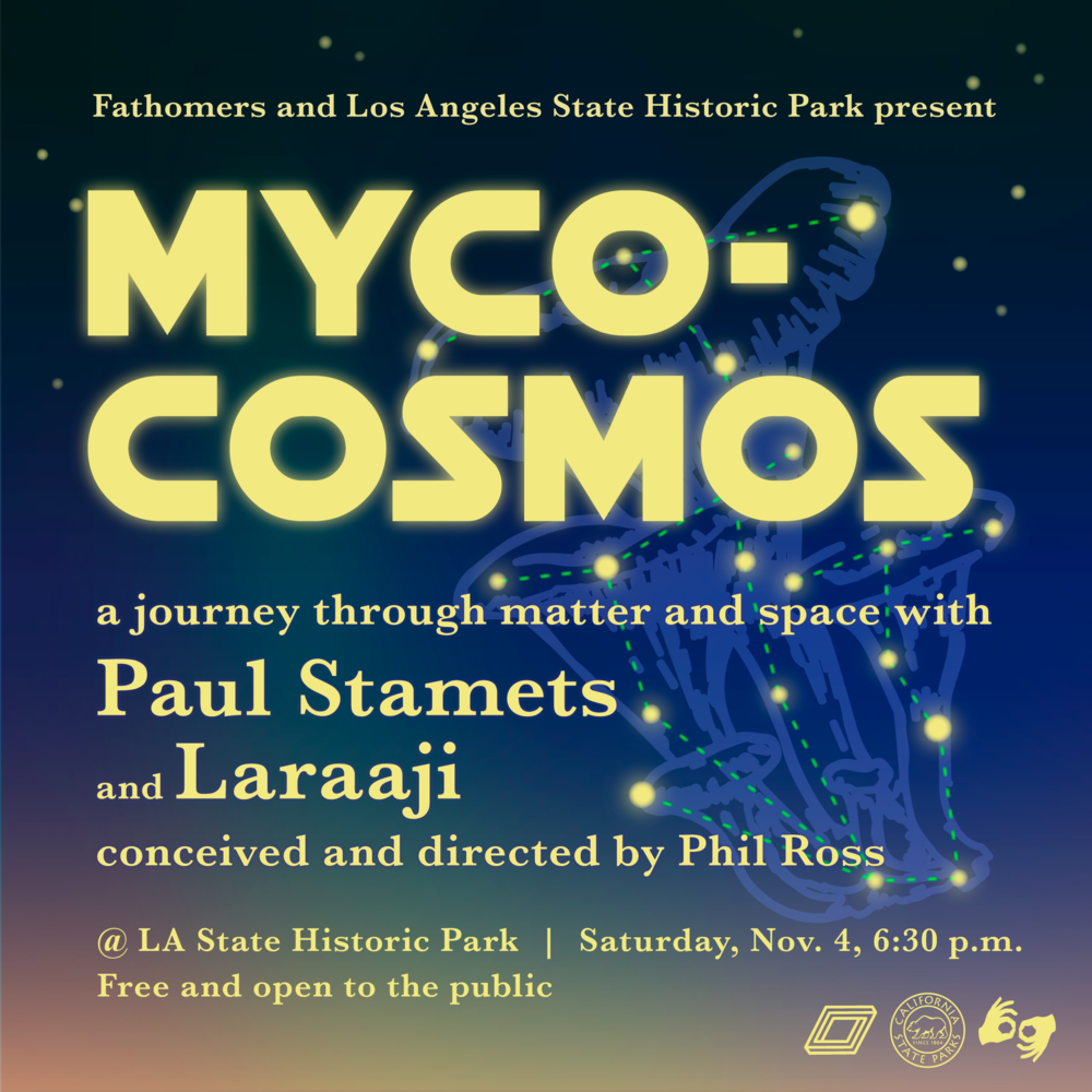 Myco-Cosmos-Final.PNG