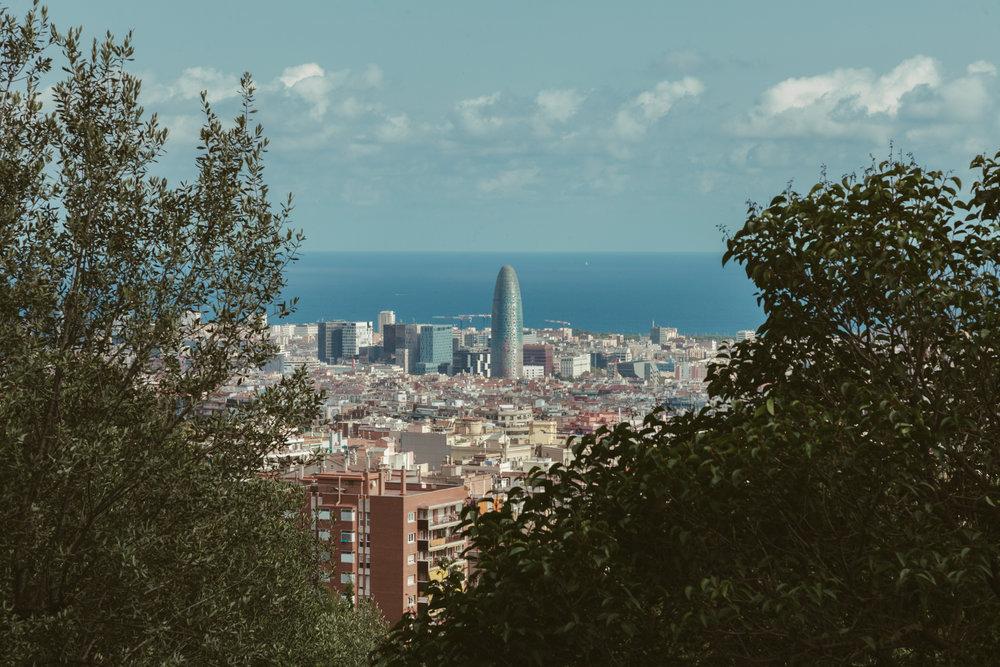 barcelonaweb-7.jpg