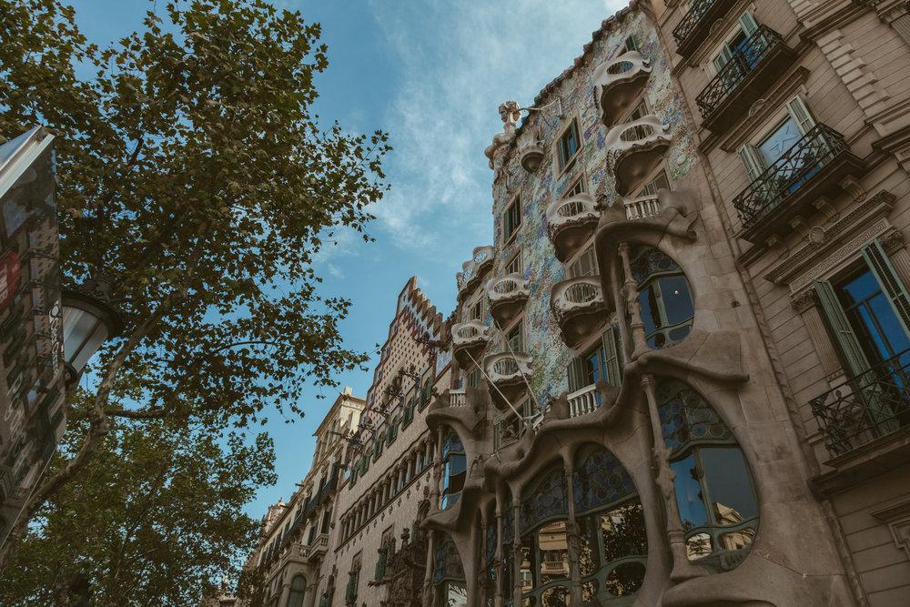 barcelonaweb-10.jpg