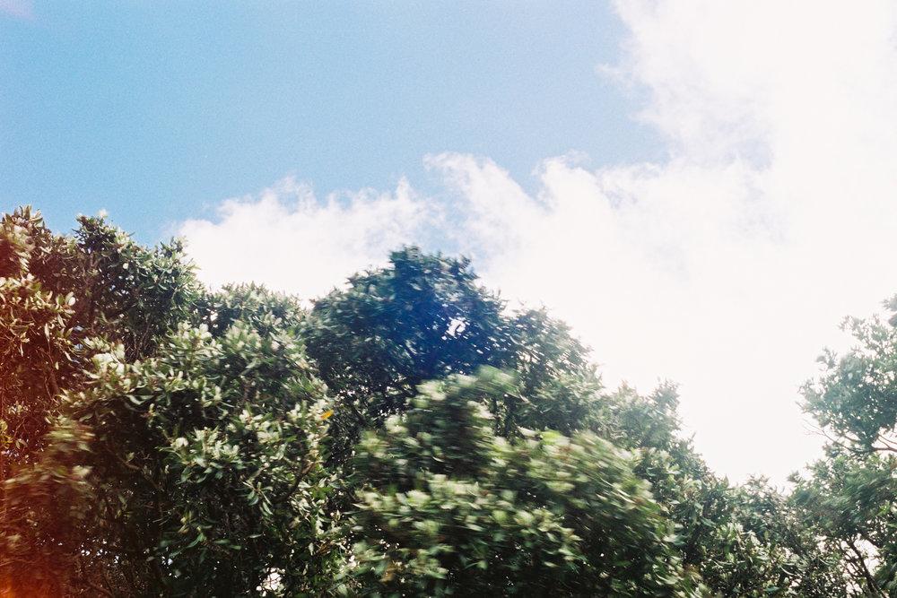 fujifilmweb-2.jpg