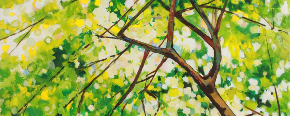 Summer-Ceiling-1web1-1000x400.jpg